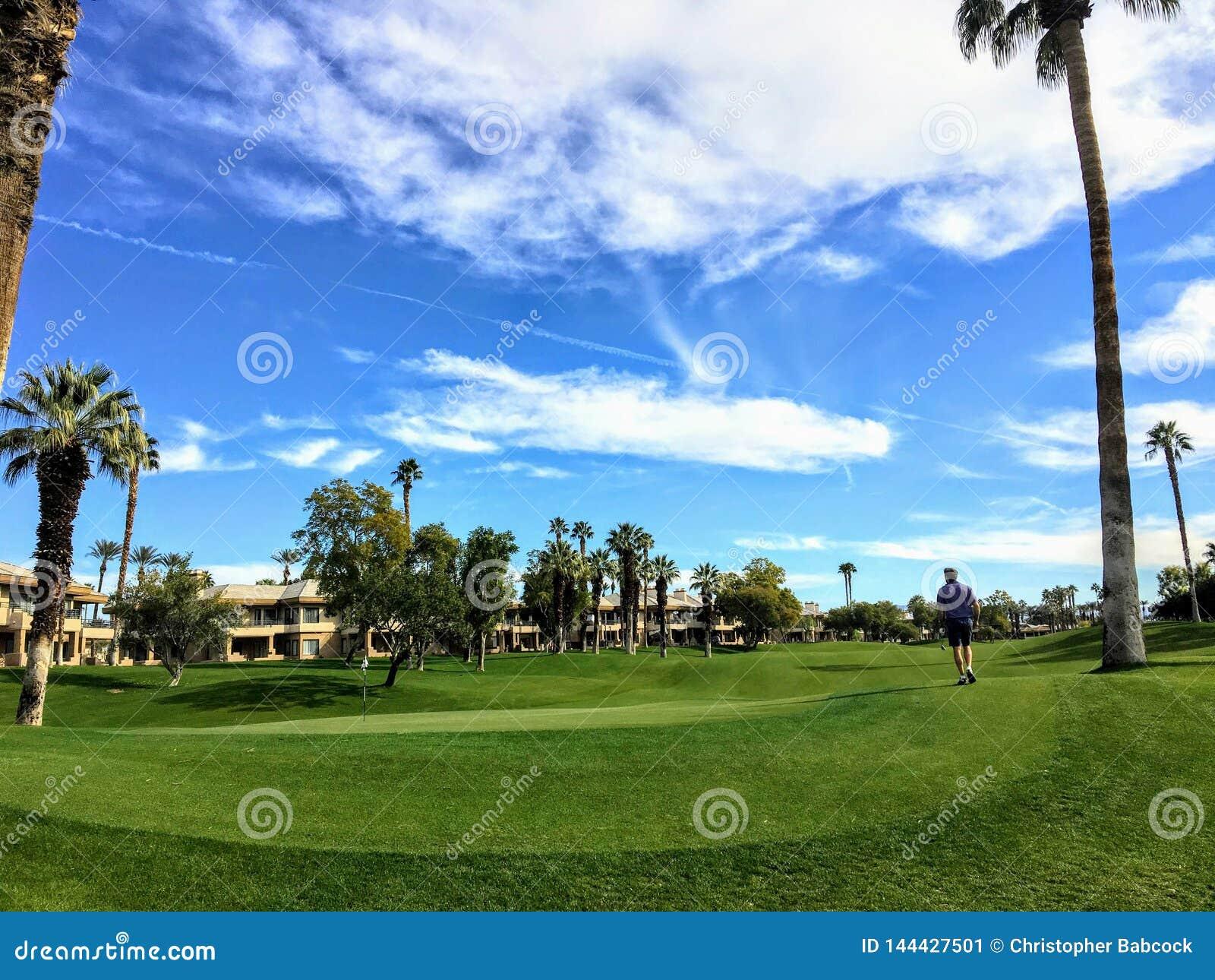 Ciekawy widok golfisty odprowadzenie w kierunku zieleni otaczającej bardzo wysokimi drzewkami palmowymi w tle na pustyni