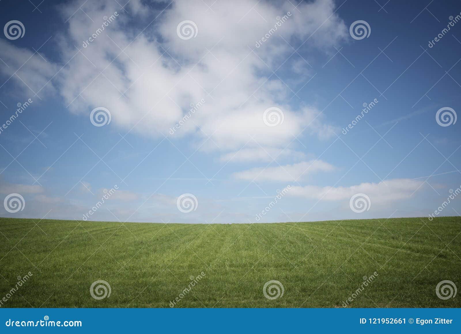 Ciel bleu, herbe verte, nuages blancs