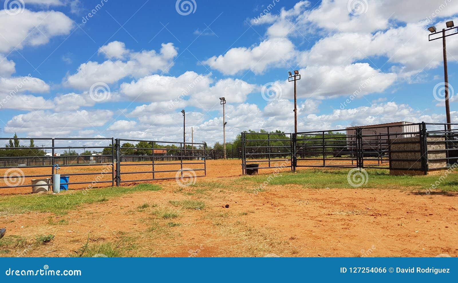 Cielo azul nublado de los terrenos de entrenamiento del rodeo