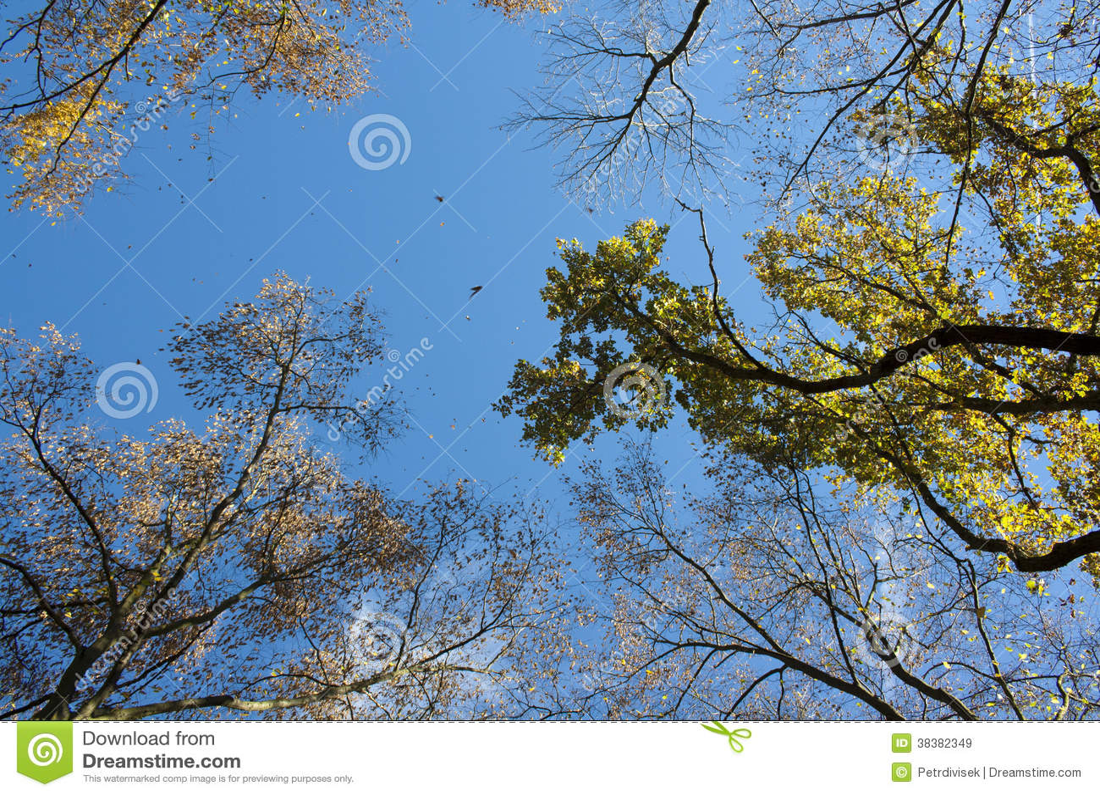 Cielo del otoño