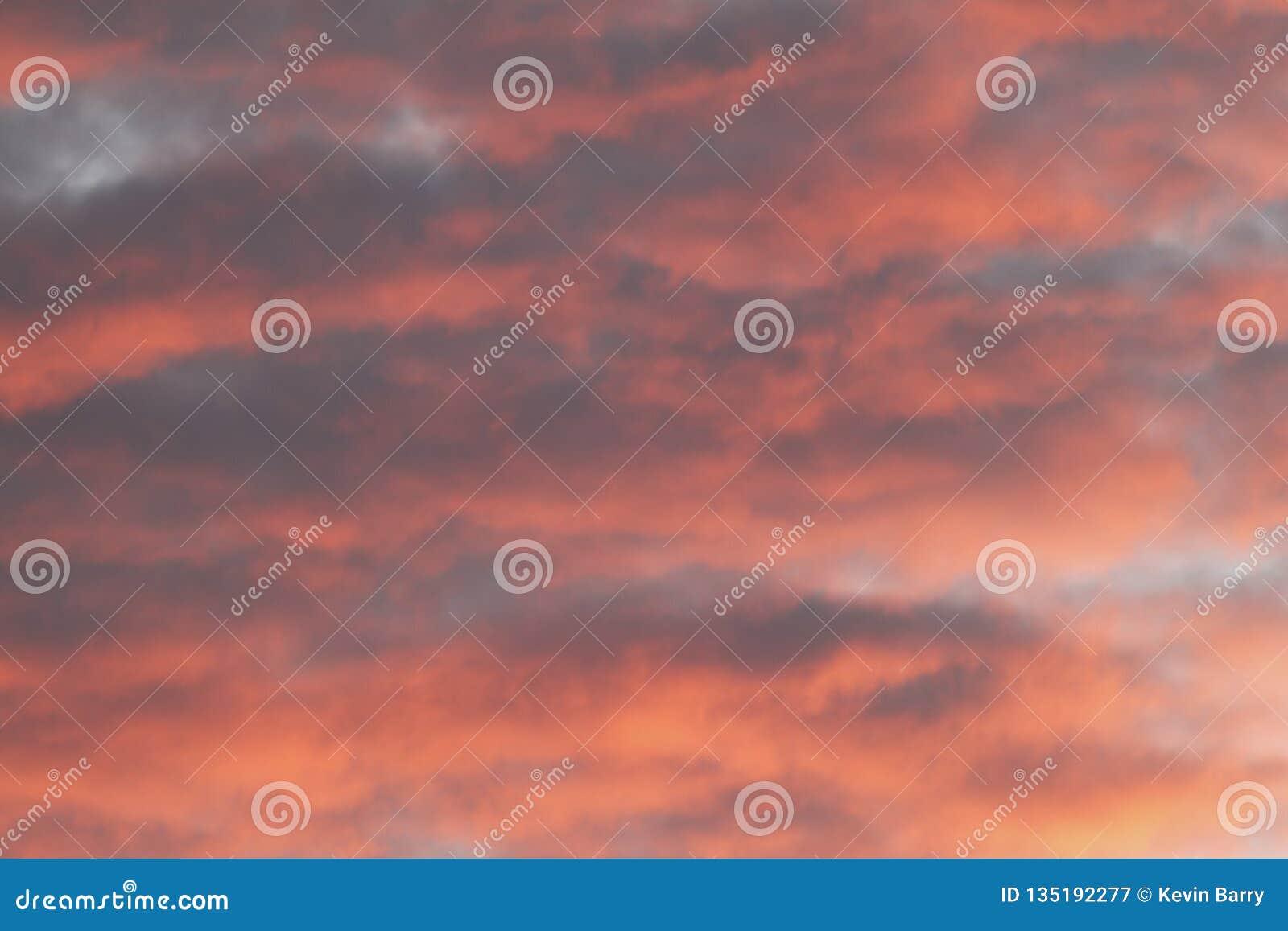 Cielo di alba sopra sud-ovest Florida
