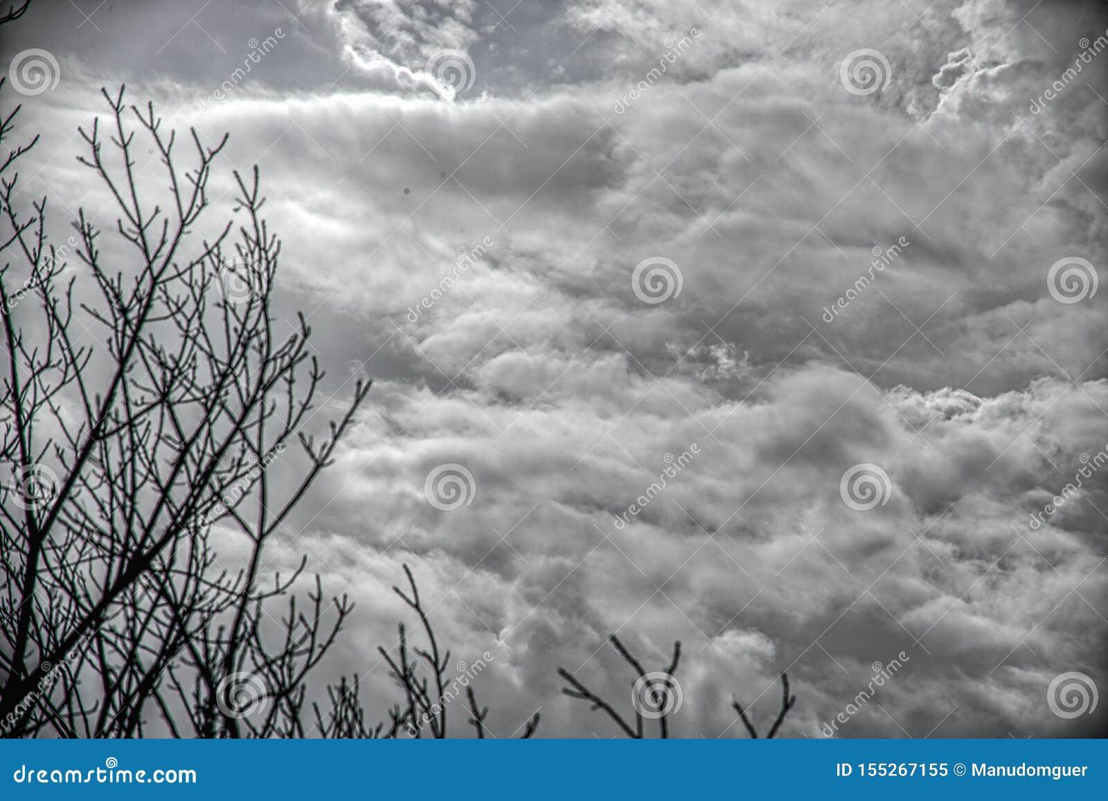 Cielo e nuvole scuri drammatici Priorit? bassa del cielo nuvoloso Cielo nero prima del temporale e della pioggia Fondo per la mor