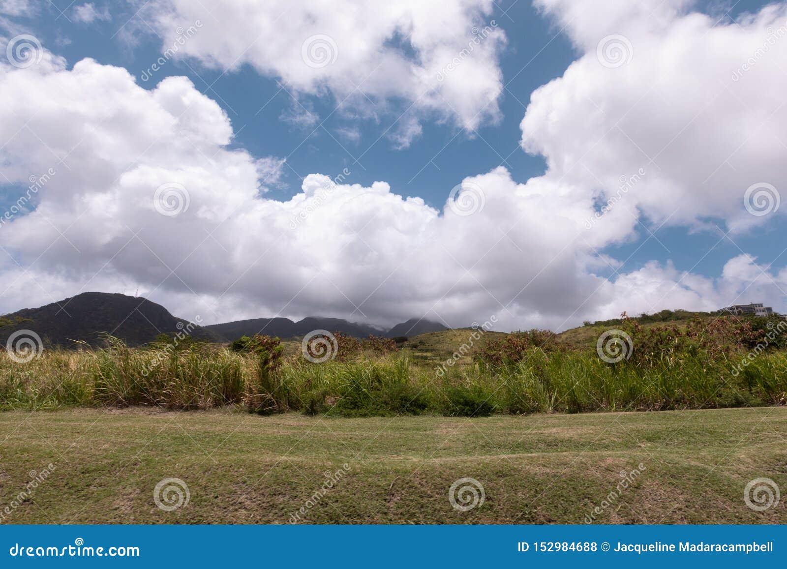 Cielo hermoso sobre las montañas y prado