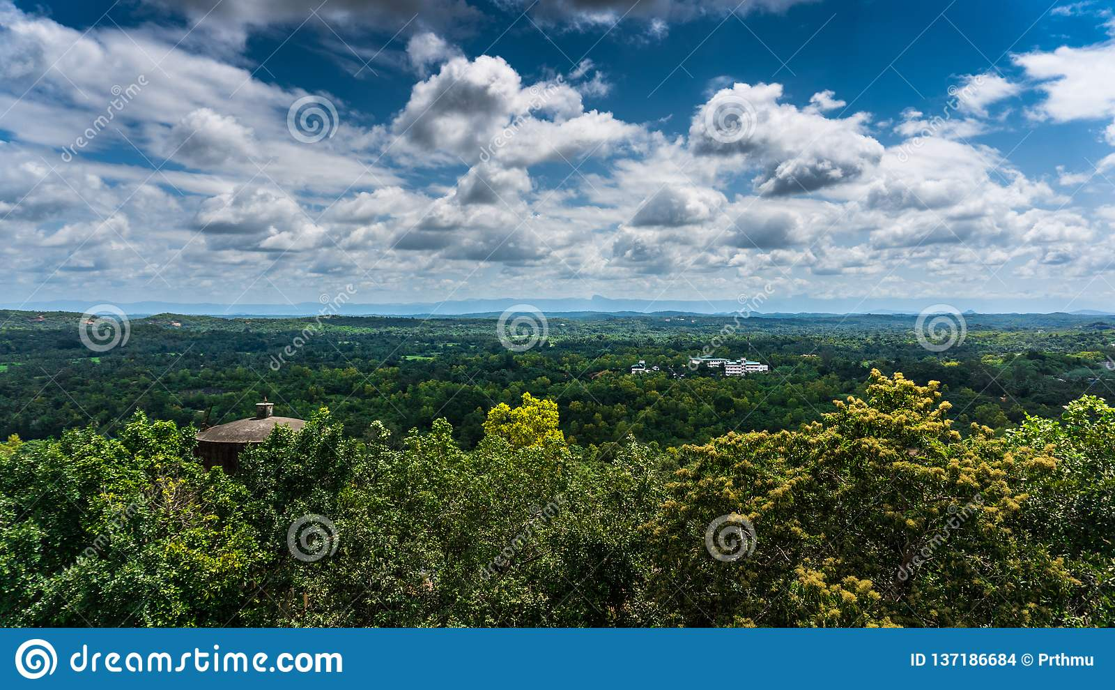 Cielo nublado estupendo en el bosque