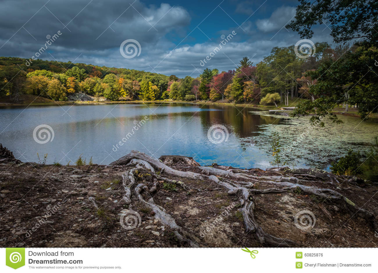 Cielo quebradizo dramático del otoño sobre el lago Tyrrel en el jardín de Innisfree, Millbrook, Nueva York