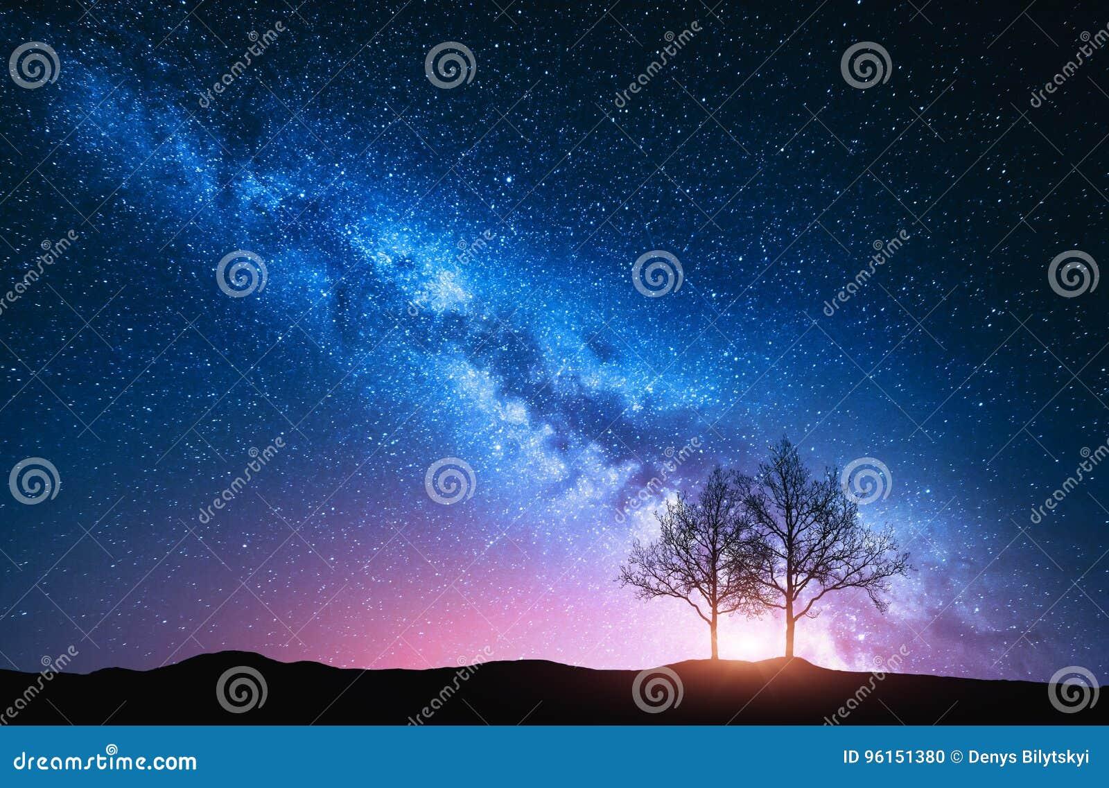 Blue Dream Cielo Stellato Costo.Cielo Stellato Con La Via Lattea E Gli Alberi Rosa Fotografia Stock