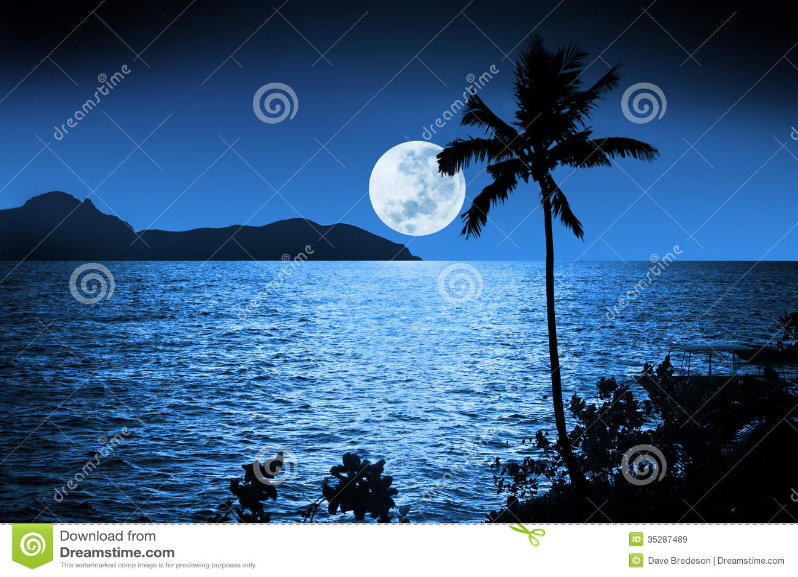 Cielo tropicale della luna piena
