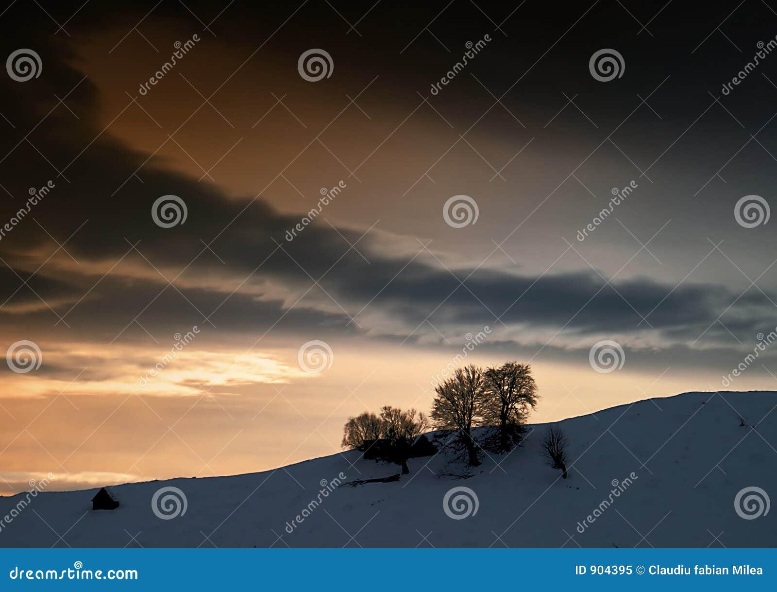 Ciemną zimę