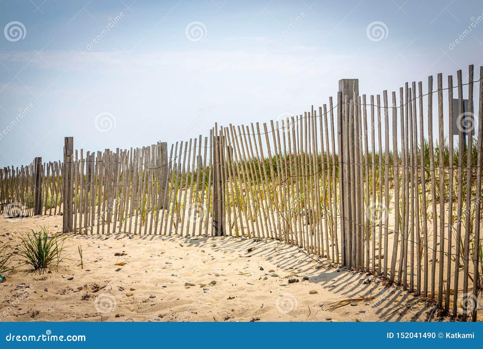 Cienieje plażowego fechtunek na martha s vineyard, Massachusetts