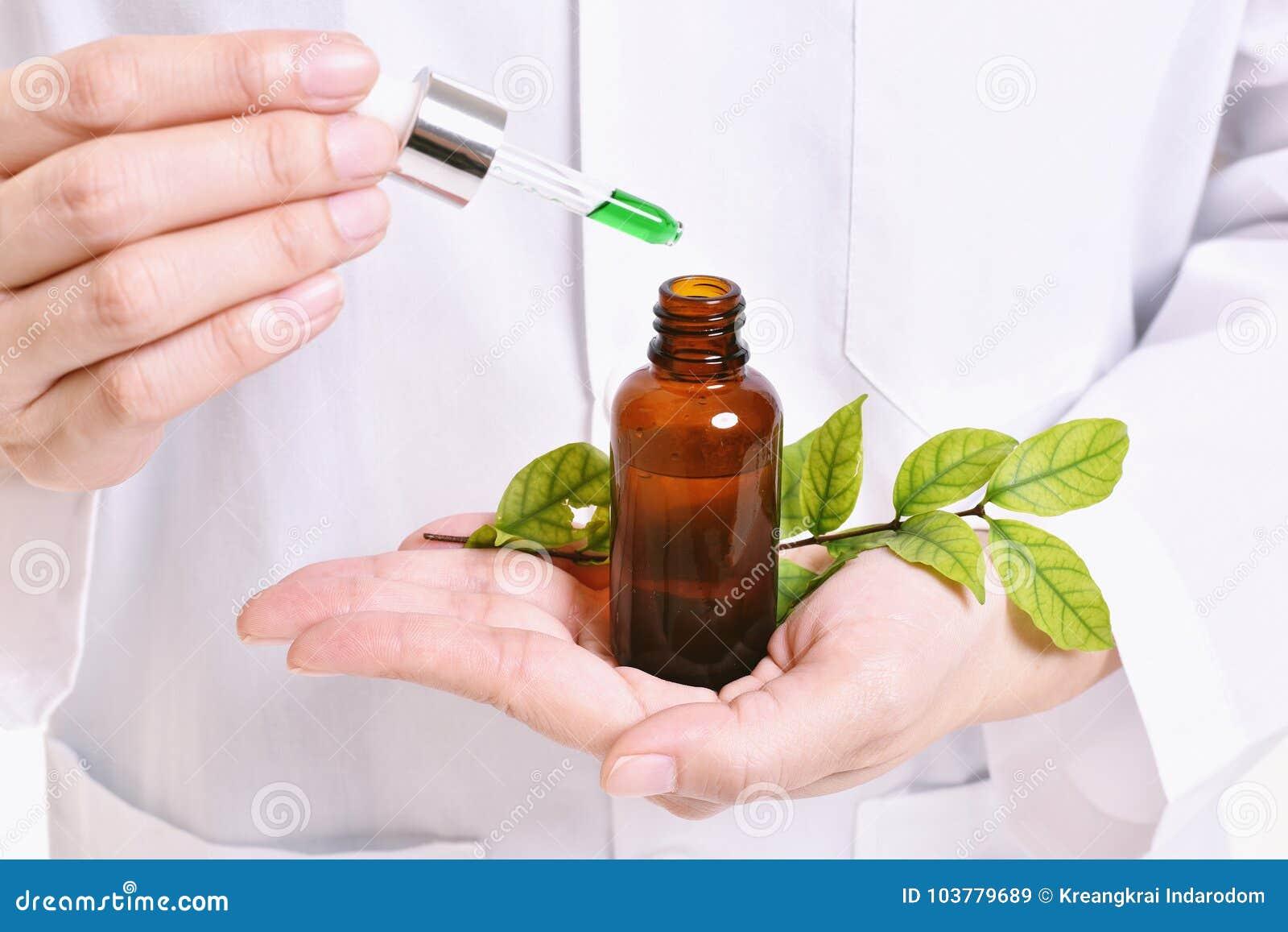 Cientista com pesquisa natural da droga, descoberta verde do fitoterapia no laboratório de ciência