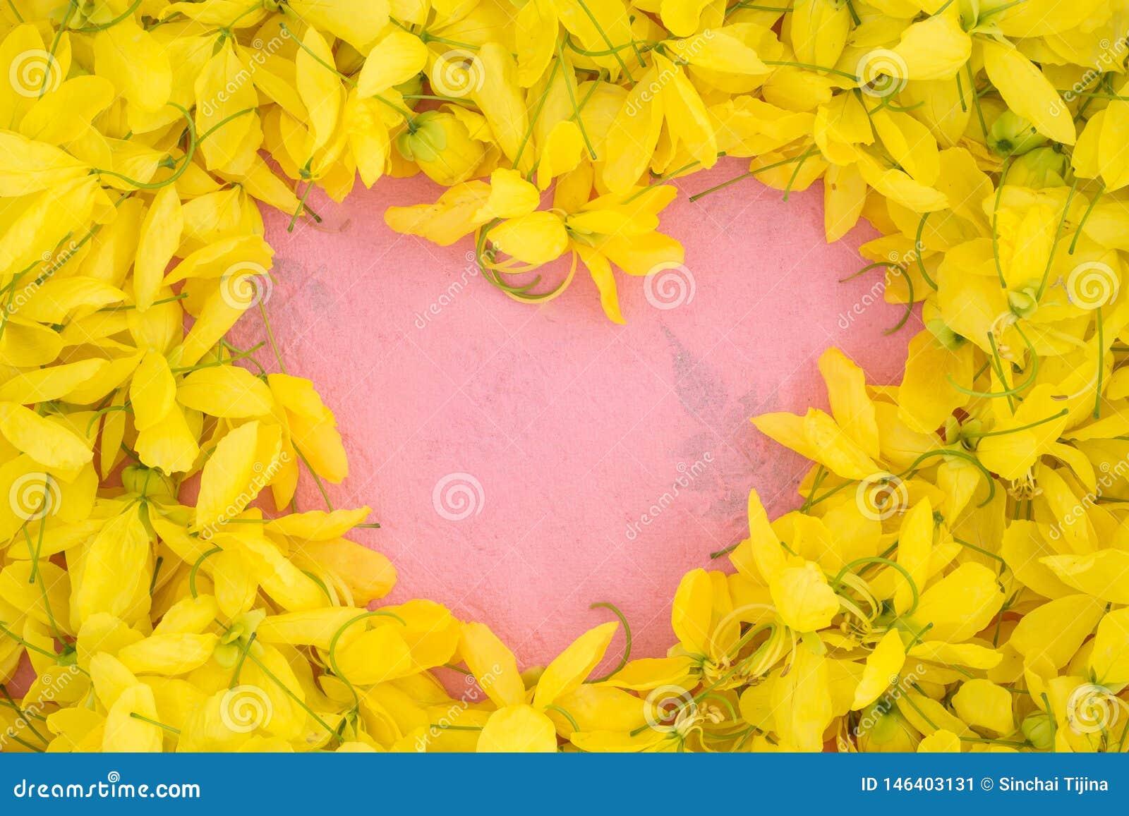 Cierre de Wallpeper encima de la flor amarilla de la naturaleza en fondo rosado
