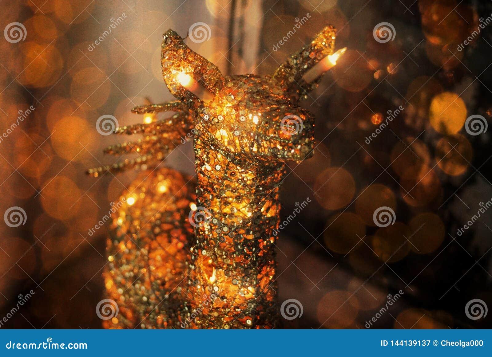 Ciervos de la Navidad de luces en un fondo oscuro