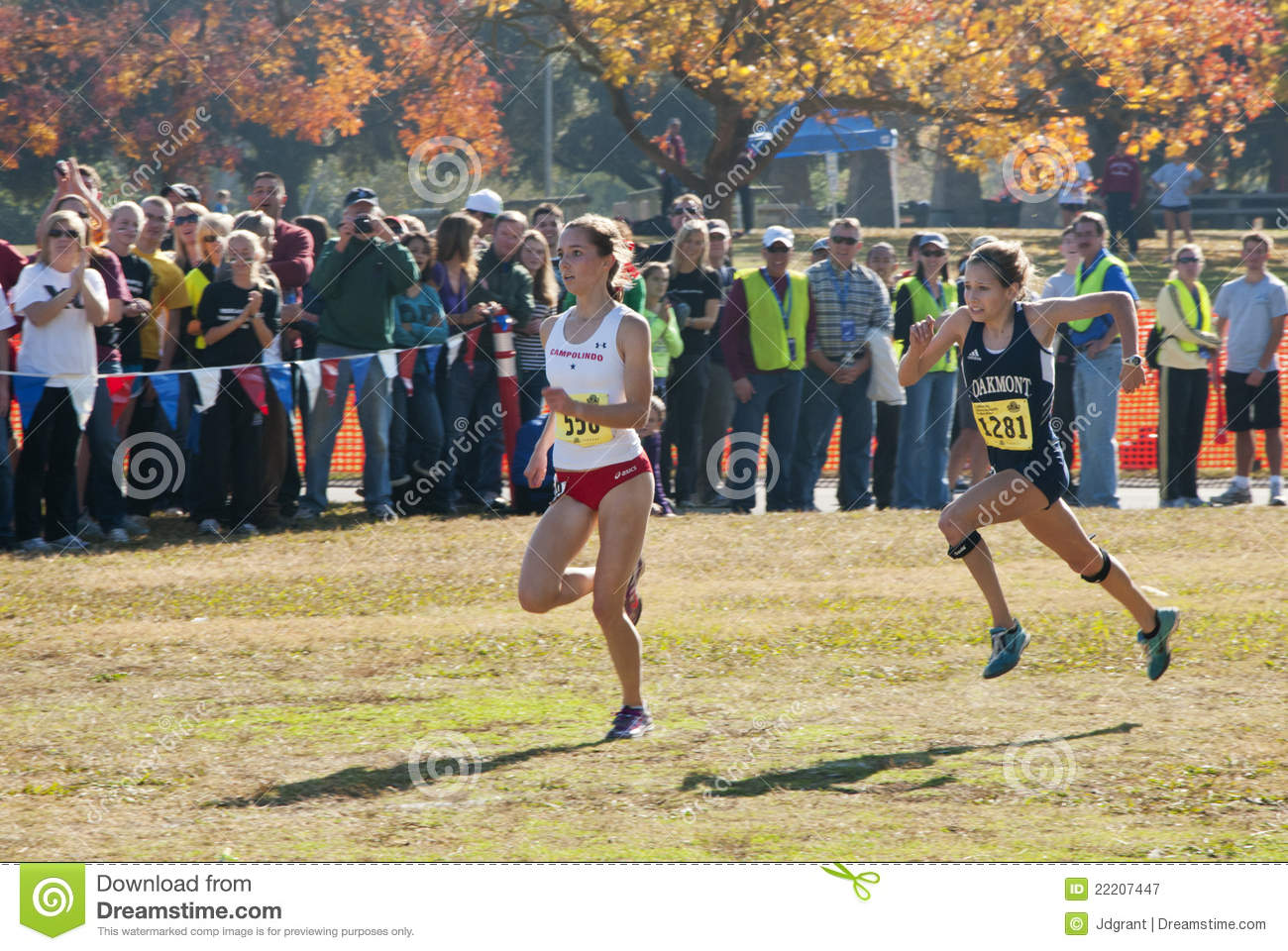 cross country meet results azcentral comics