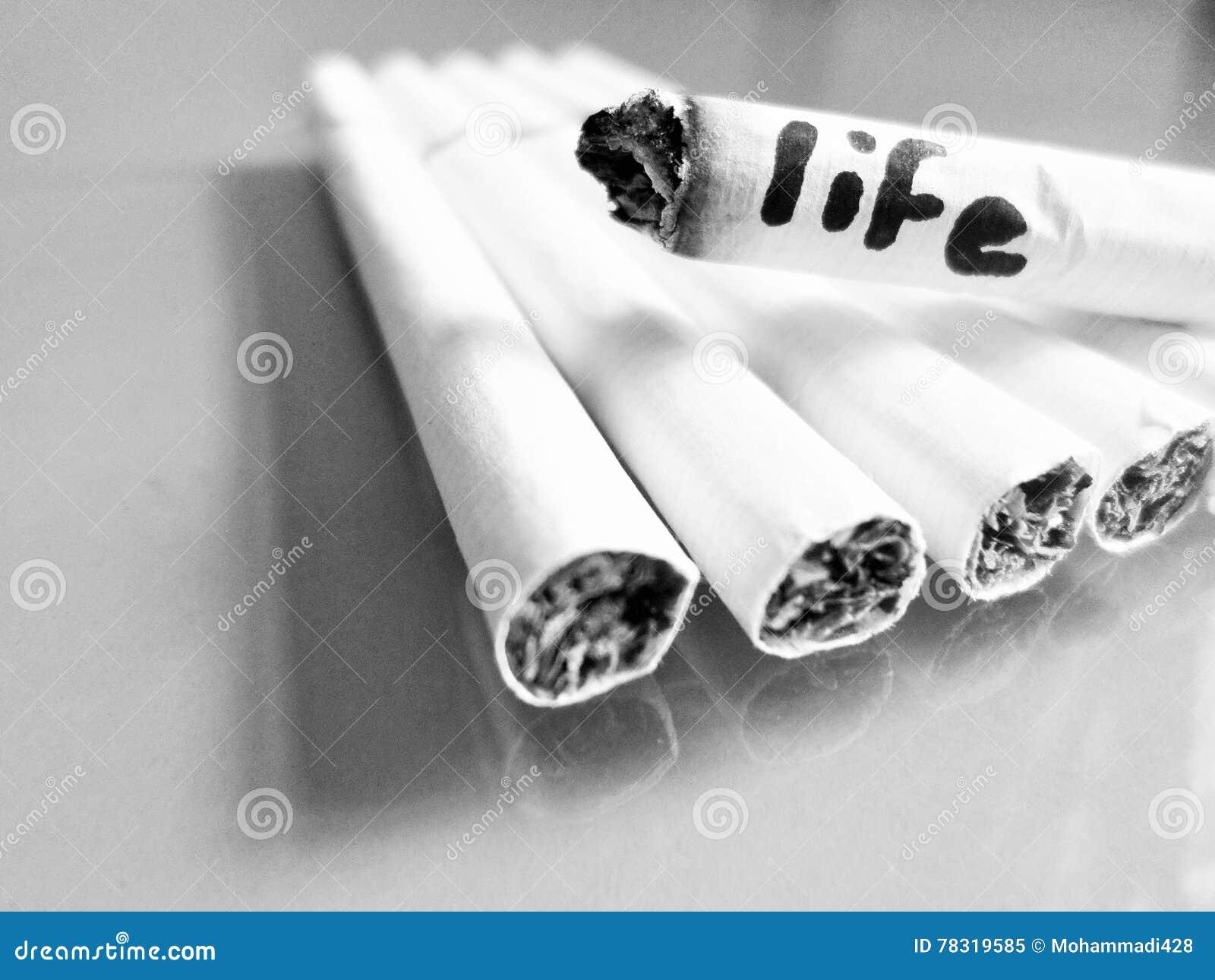 Cigarett