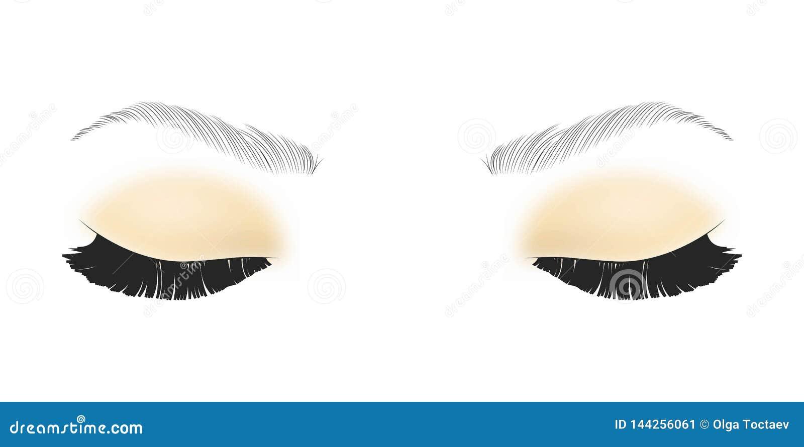 Cigli falsi neri Singolo elemento decorativo della mascara