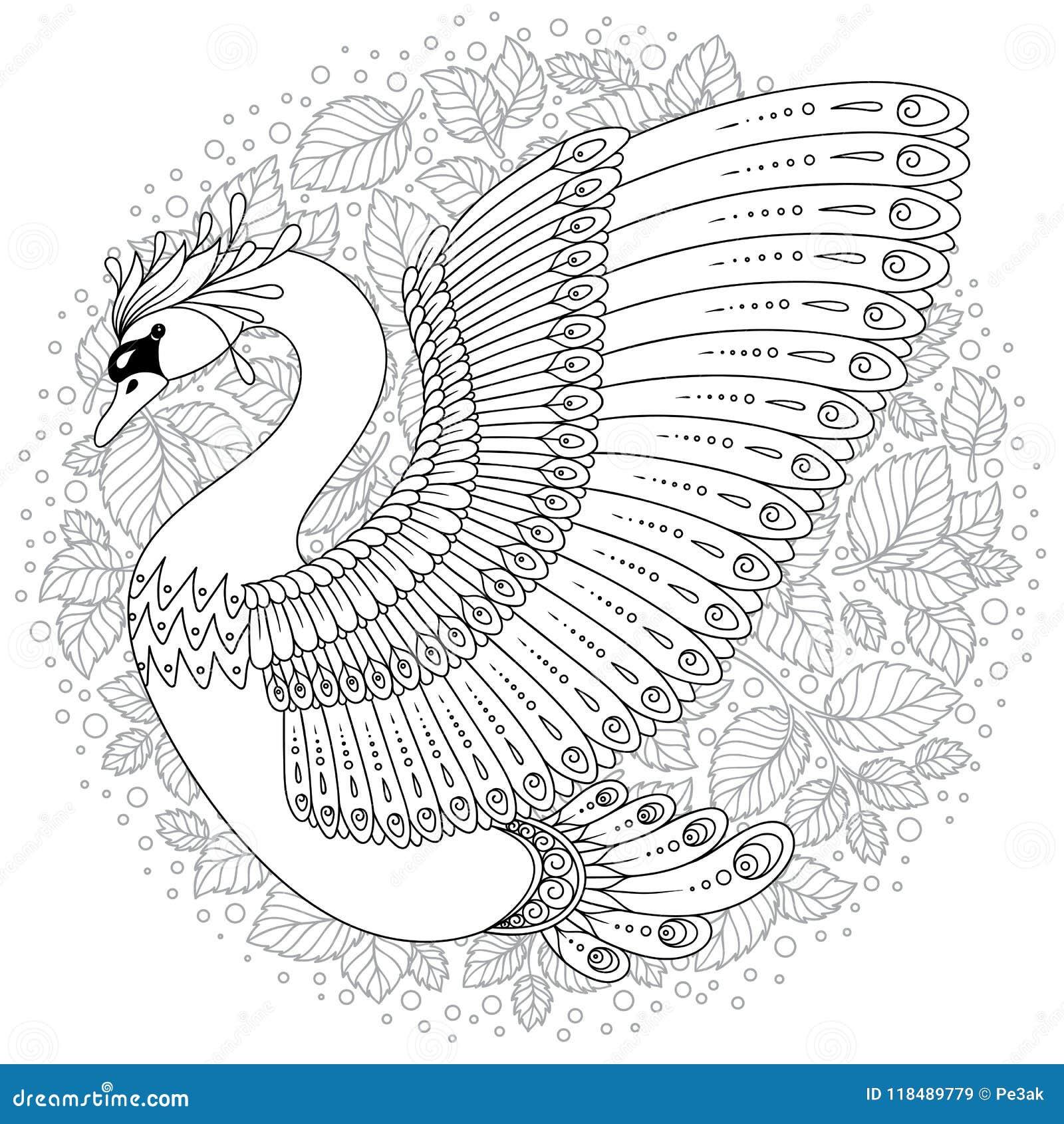 Cigno Decorato Disegnato A Mano Immagine Per I Libri Da Colorare