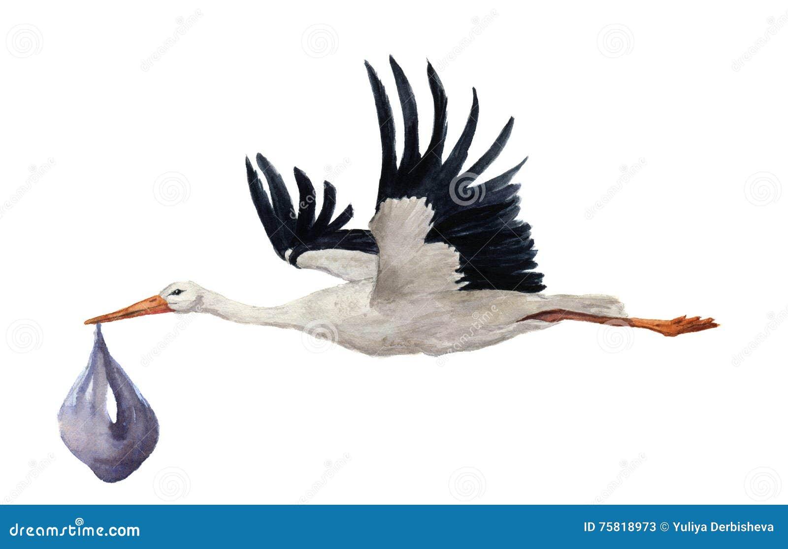 Cigogne blanche de vol peint la main d 39 aquarelle avec le b b de gar on illustration peinte - Jeux d oiseau qui vole ...