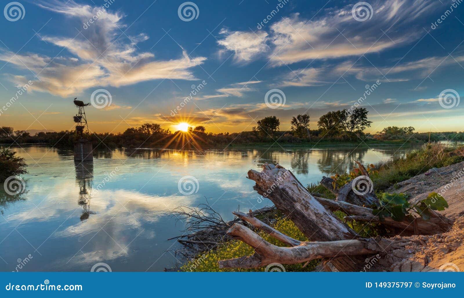 Cigognes de coucher du soleil et la rivi?re