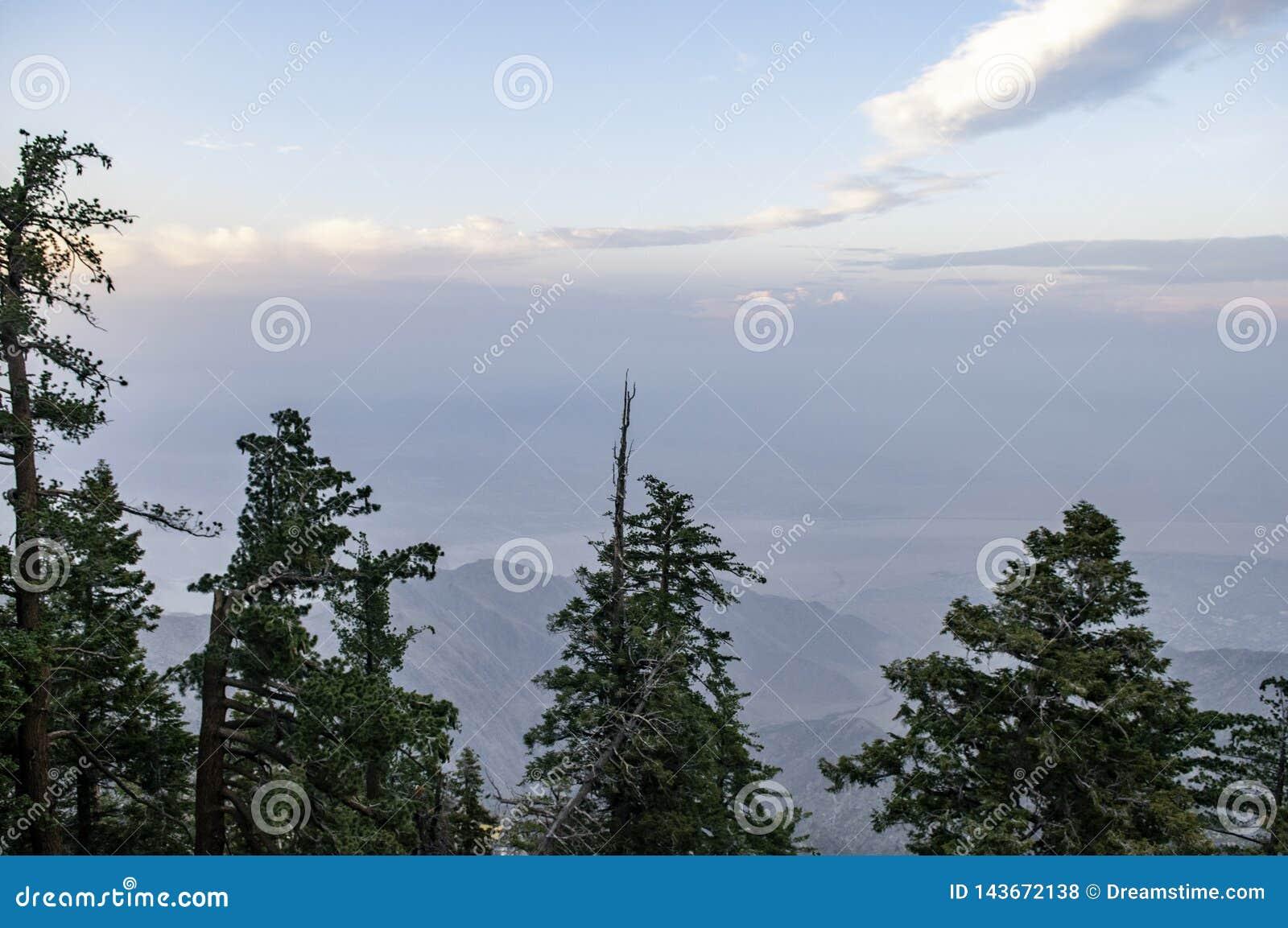 Cima di Mountain View,