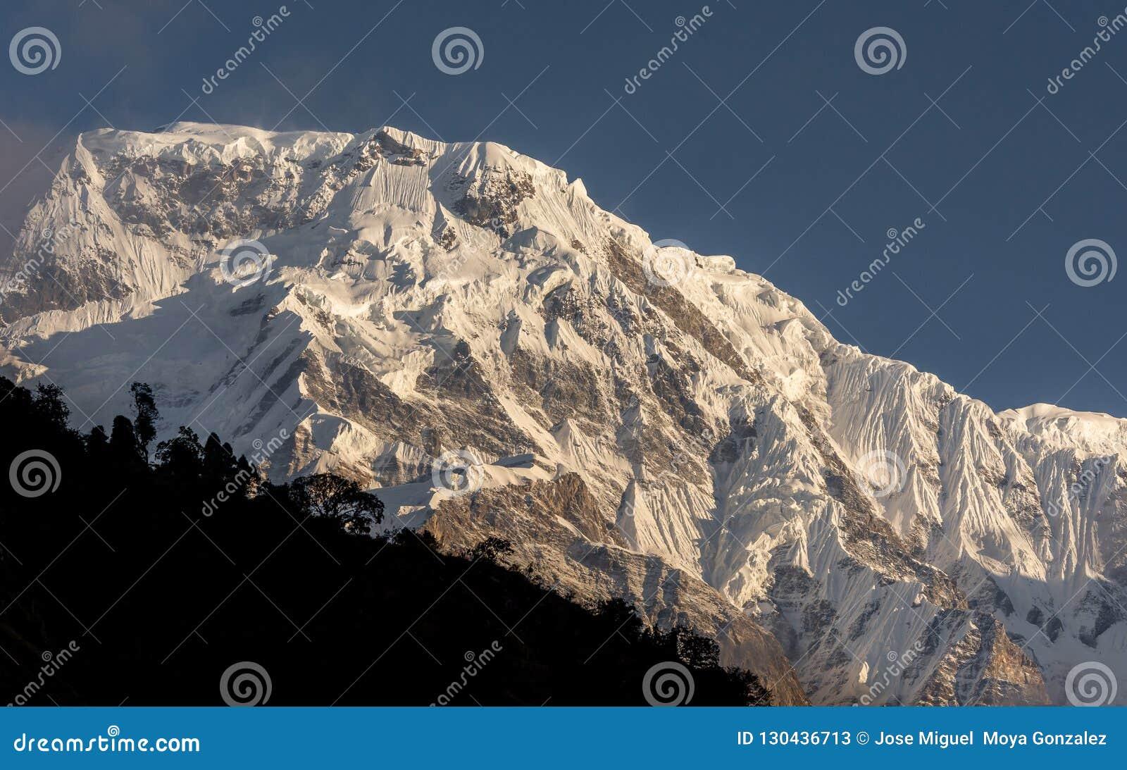 Cimeira snowcapped sul da montanha de Annapurna contra o céu azul no acampamento base de Annapurna que Trekking