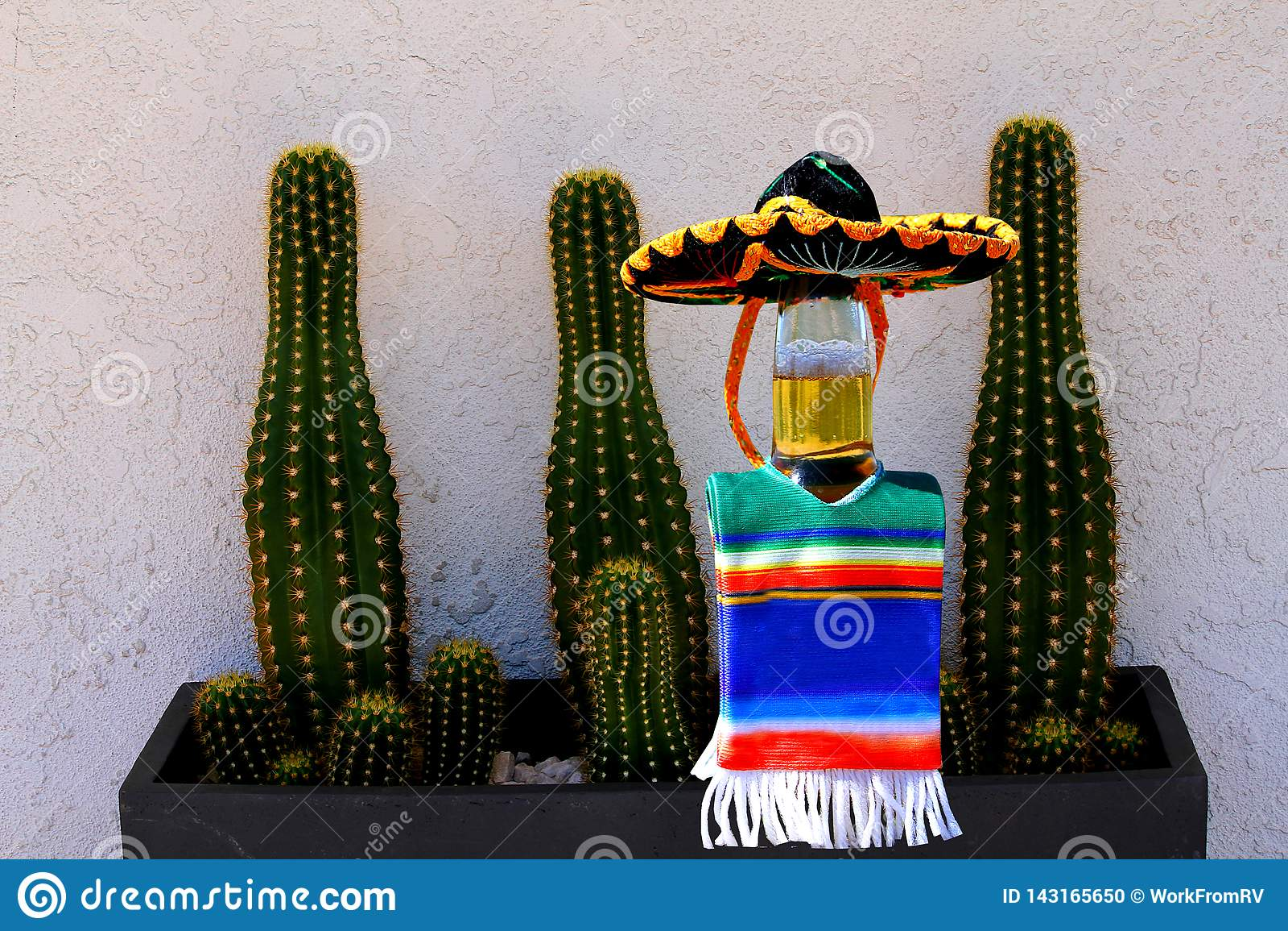 Cinco de Mayo beer bottle and cactus.