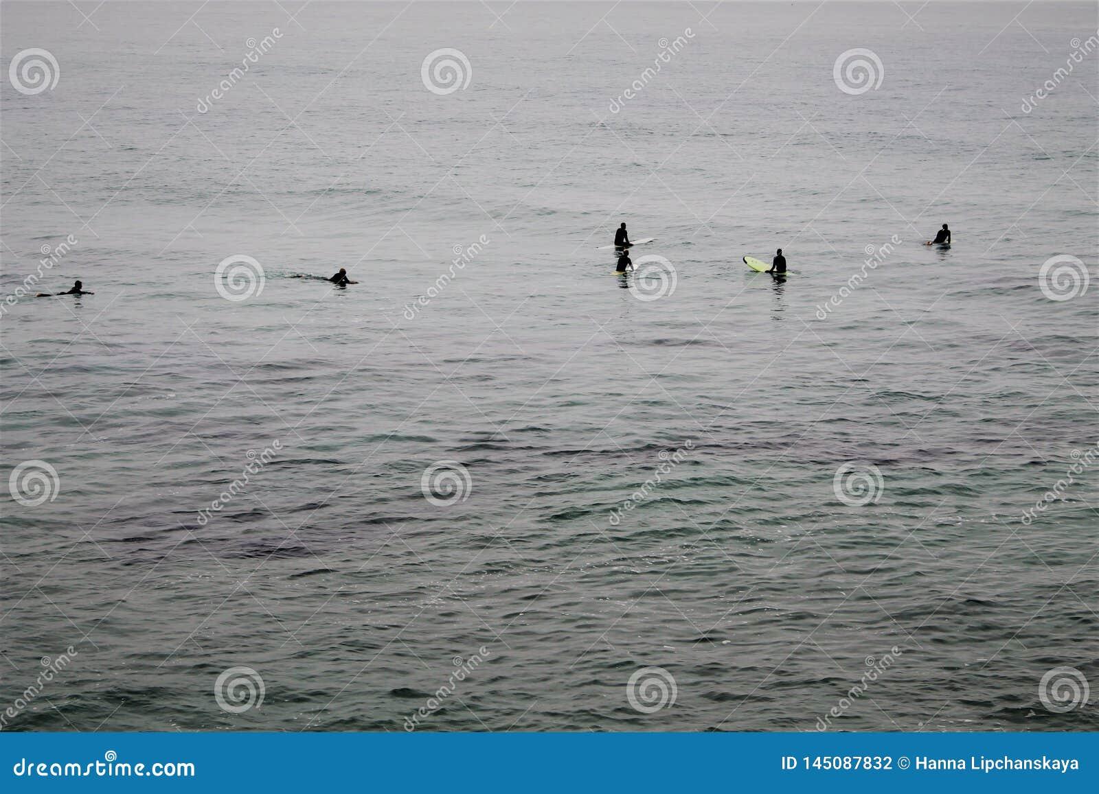Cinq surfers attendant une vague