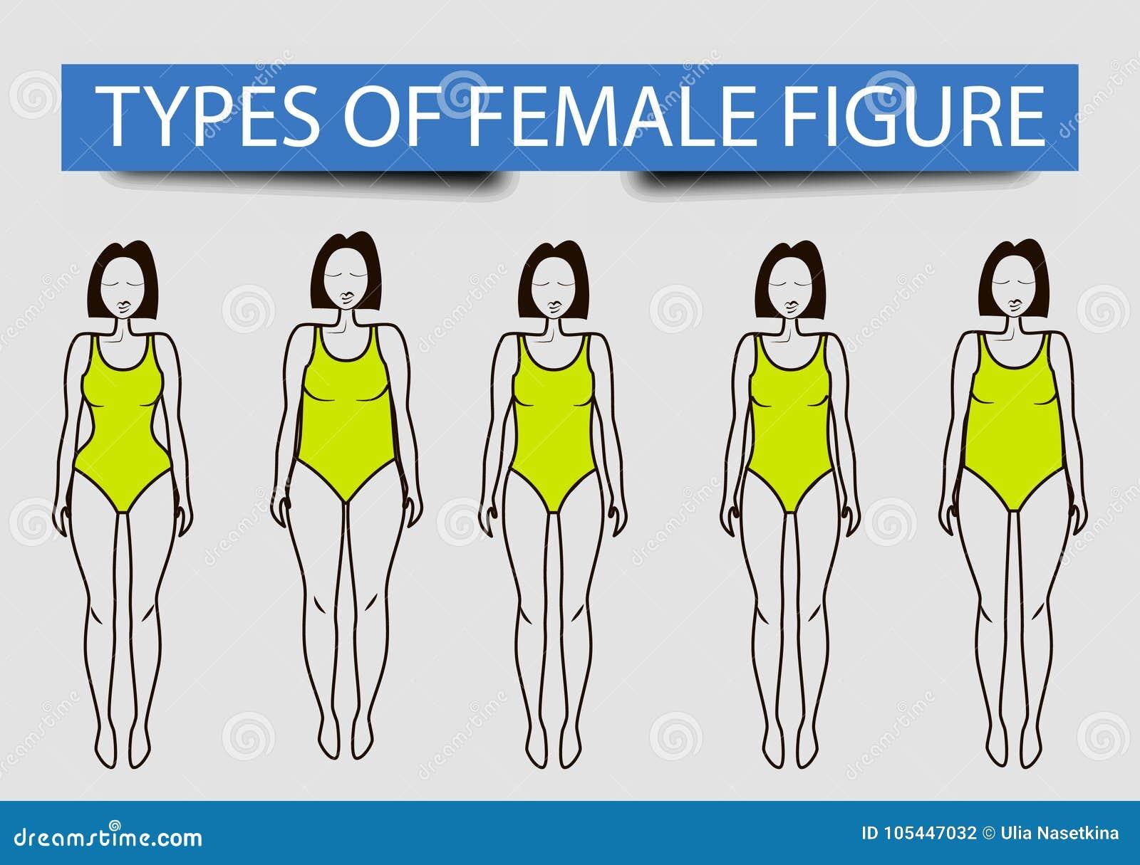 Cinq types de chiffres femelles, image de vecteur
