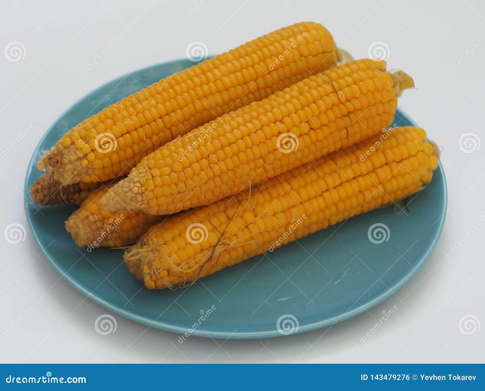 Cinque orecchie di cereale bollito su un piatto