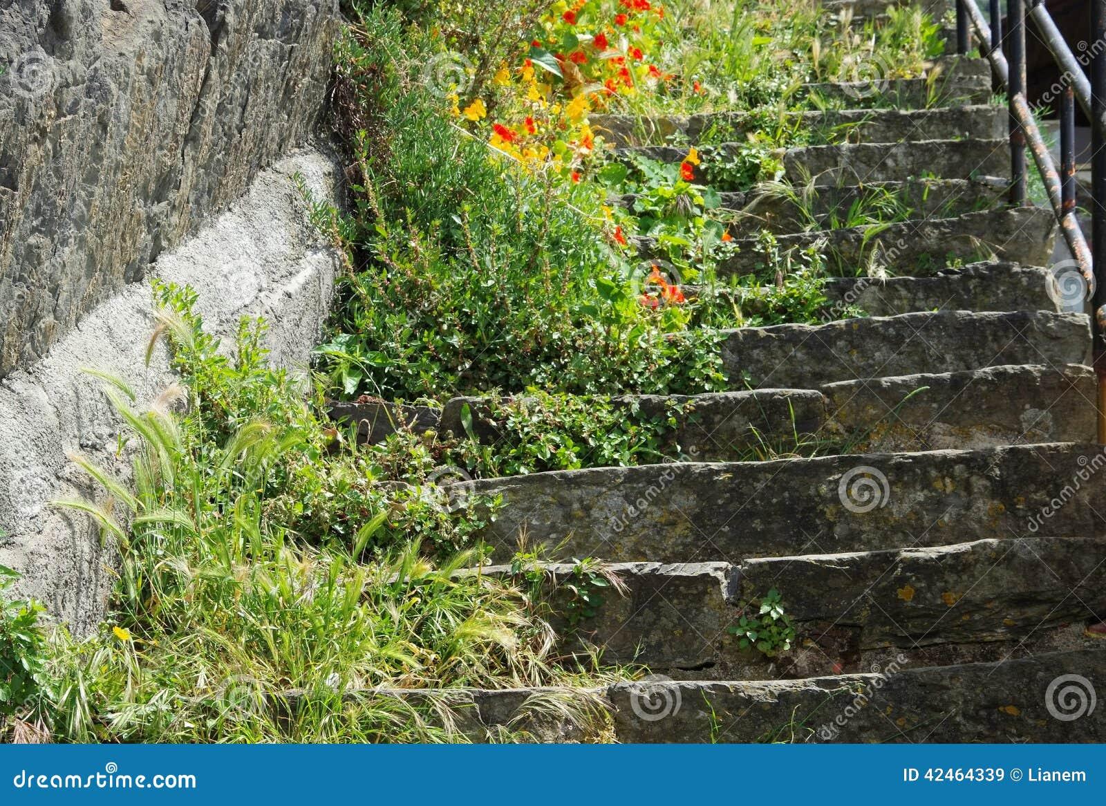 Cinque Terre Riomaggiore-Treppe