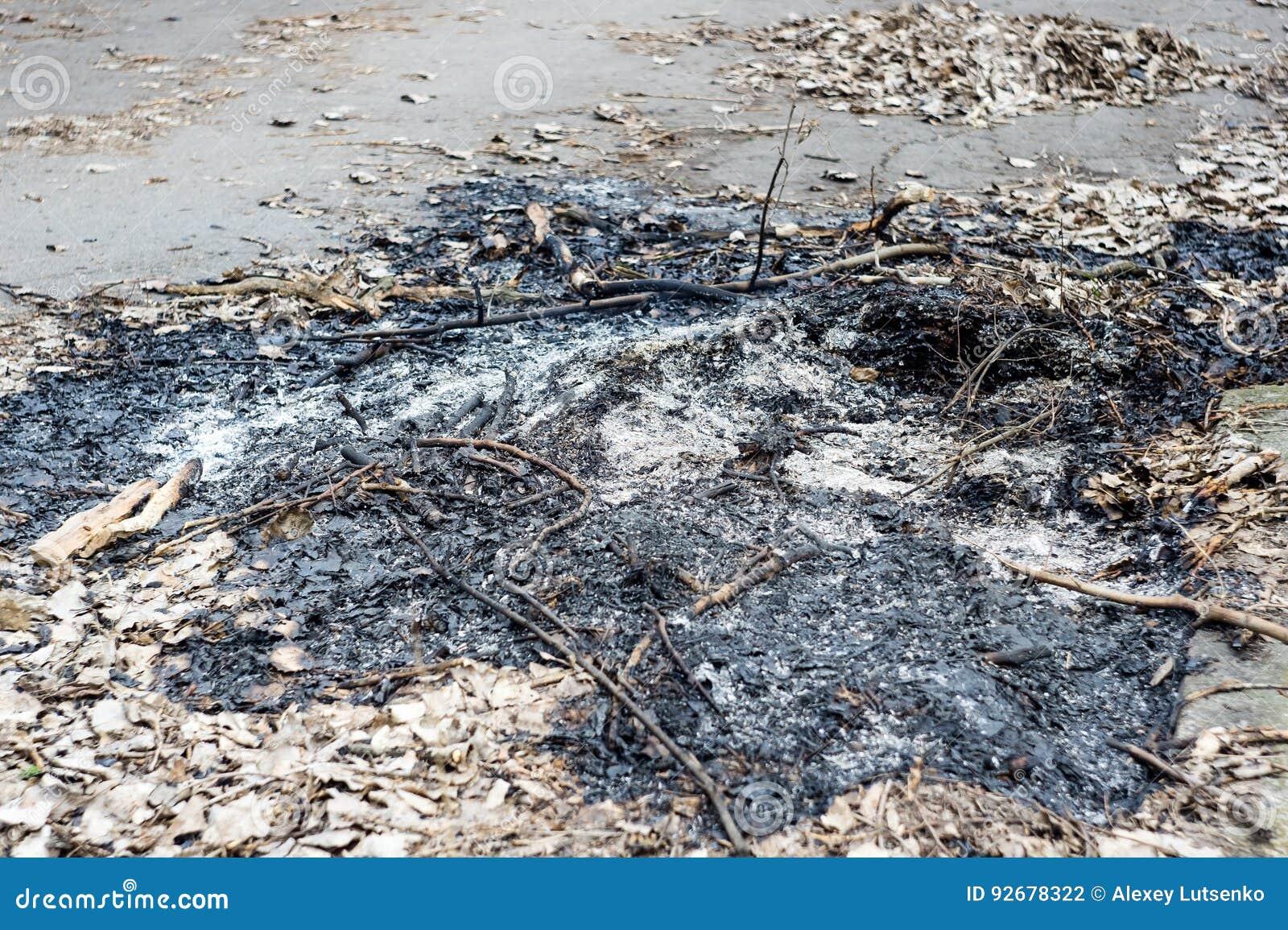 Cinzas após um fogo