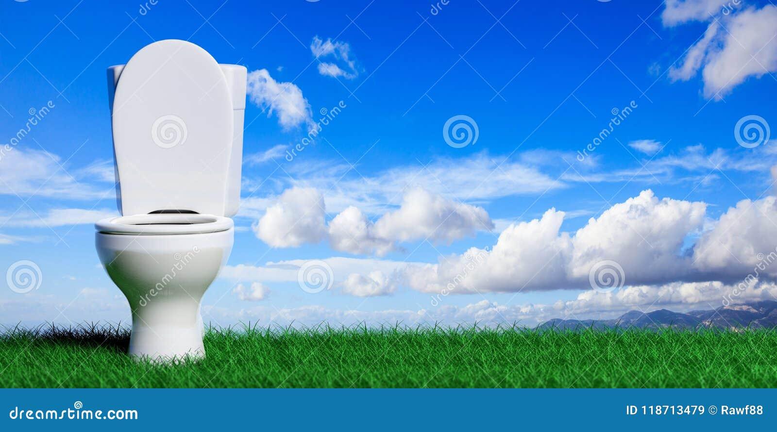 Ciotola di toilette bianca sul fondo dell erba e del cielo blu, spazio della copia illustrazione 3D