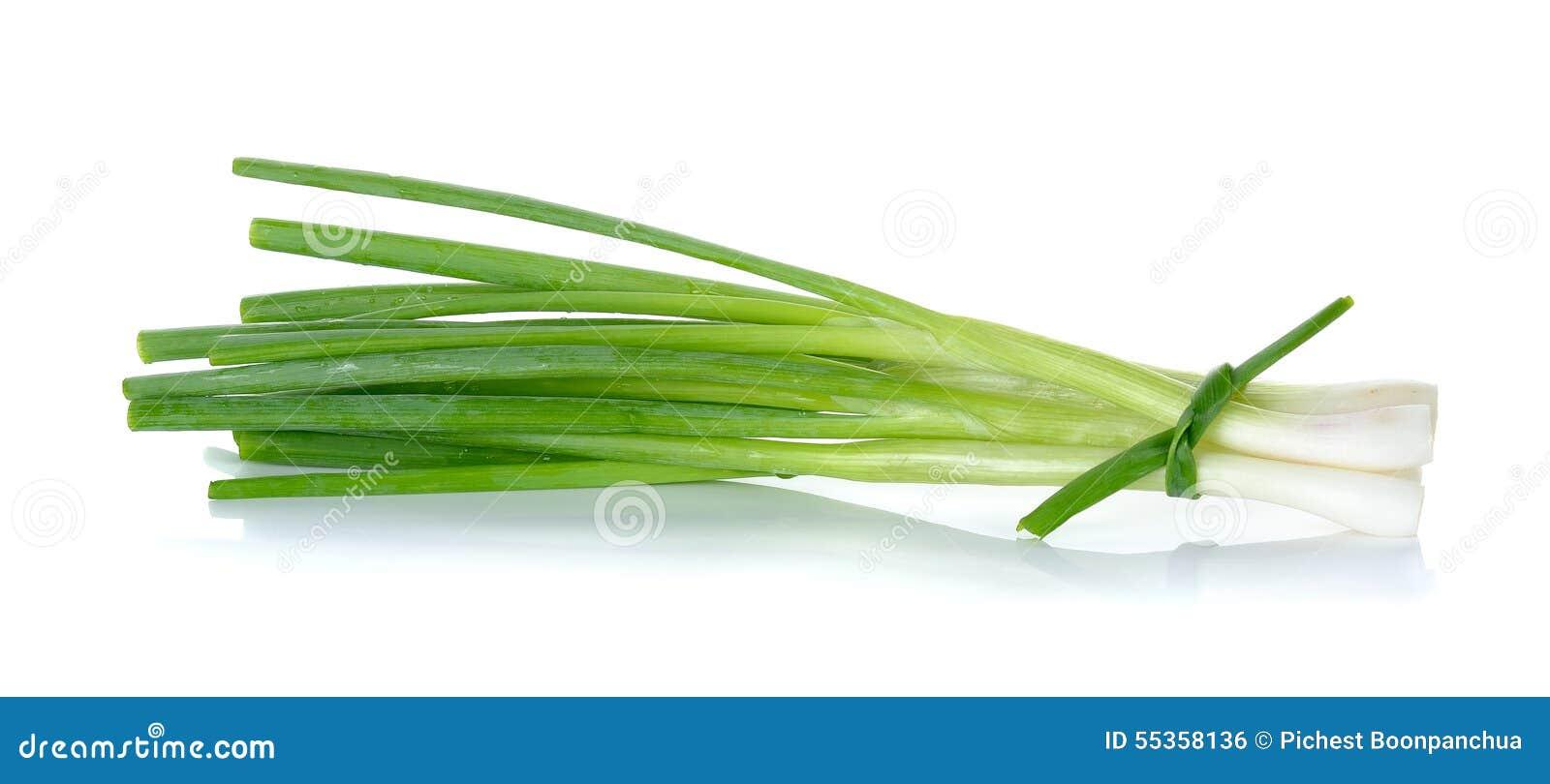 Cipolla verde isolata sui precedenti bianchi