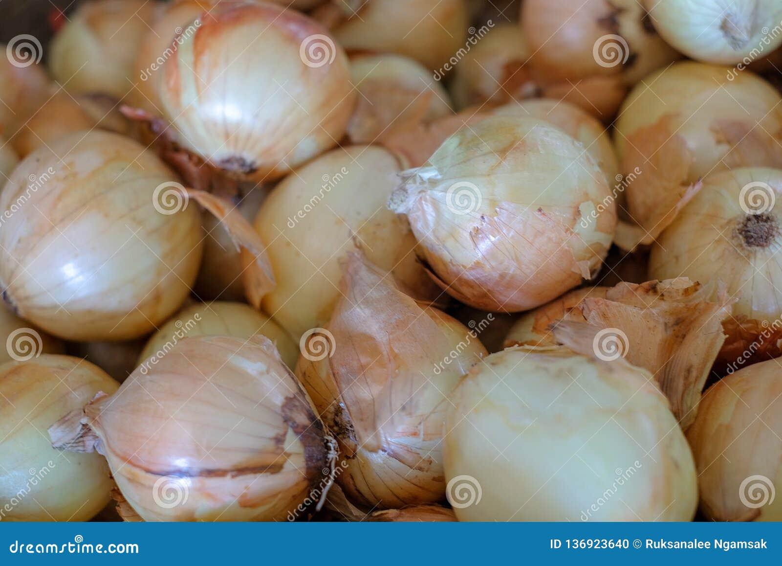 Cipolle fresche Cipolle crude fresche del fondo delle cipolle