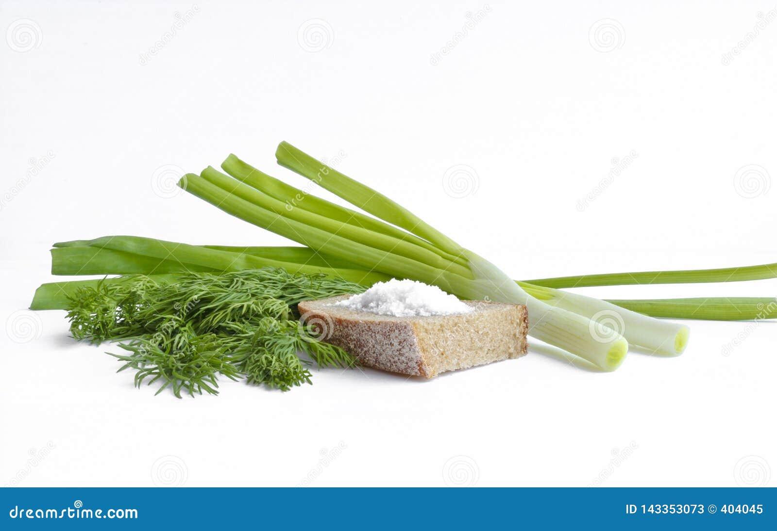Cipolle verdi, aneto, pane di segale con sale grosso - natura morta
