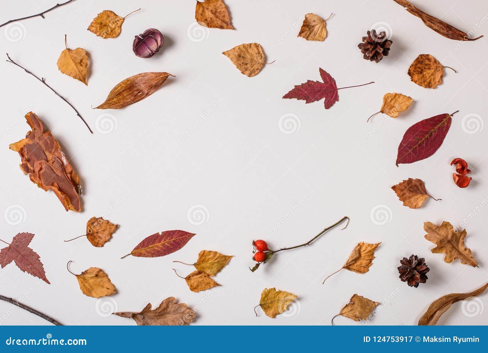 килограмм открытки с опавшими листьями сделать колор базовый, подходит