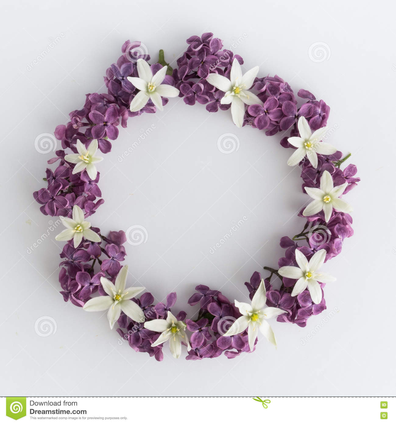 Circle Frame, Wreath Of Purple Flowers On A White Background ...