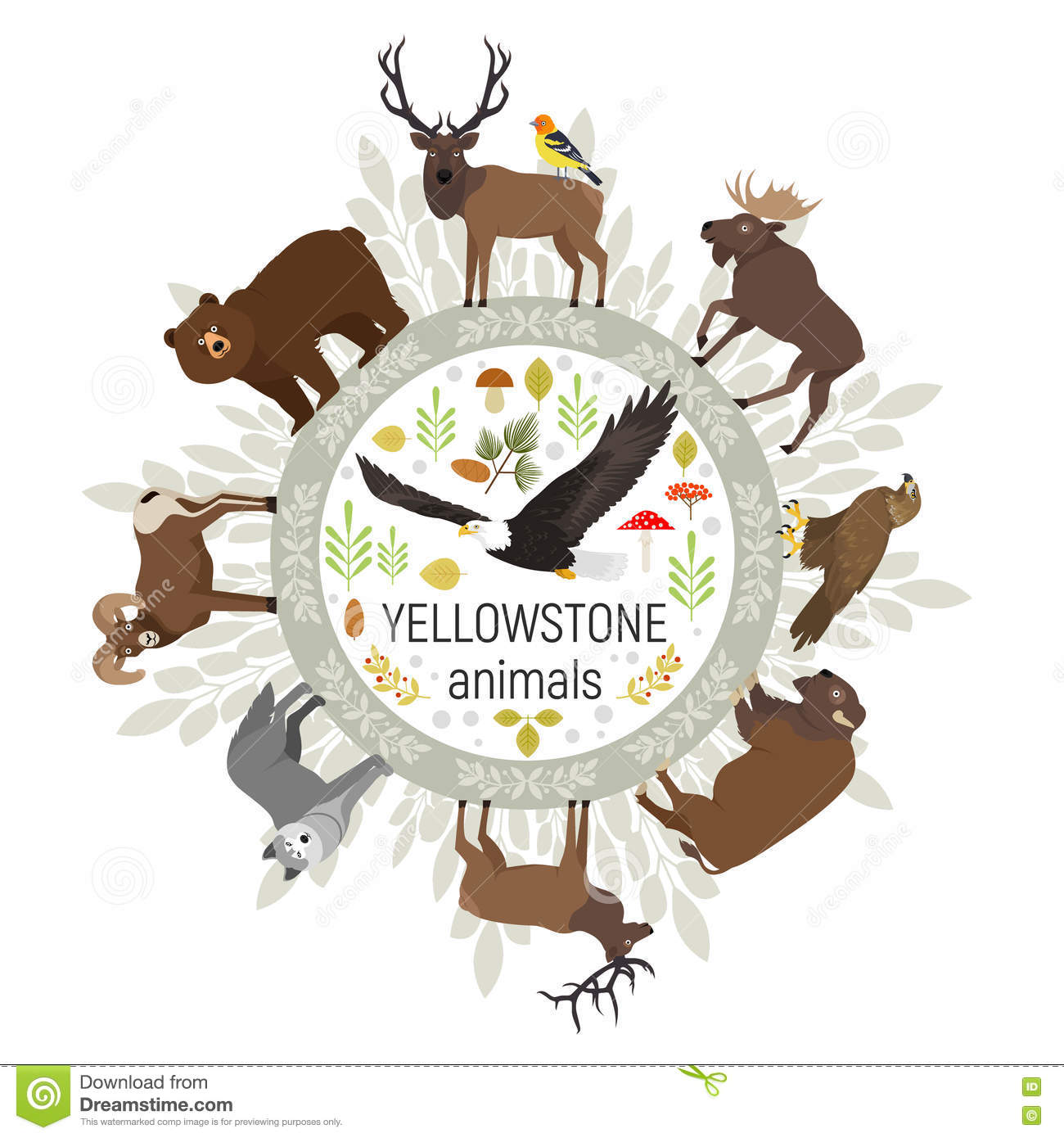 Circle Vector Template Of Yellowstone National Park Stock Bald Eagle Diagram Golden Related Keywords Suggestions Animals Grizzly Moose Elk Bear Wolf Bison Bighorn Sheep Western Tanager