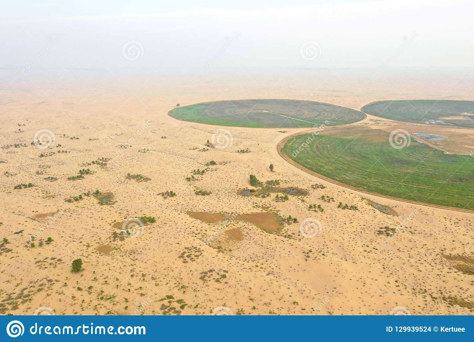 Circular Irrigation System In The Desert  Stock Photo