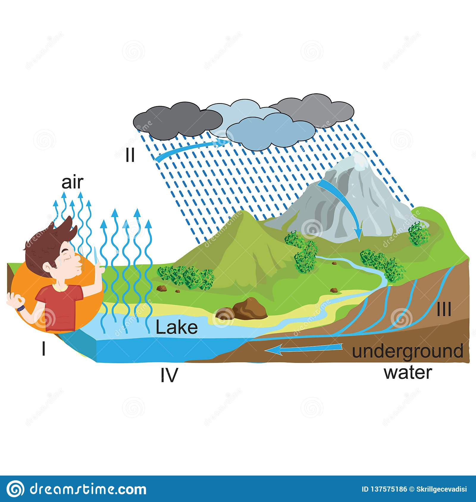 Physics Water Cycle The Journey Of Water Stock Vector