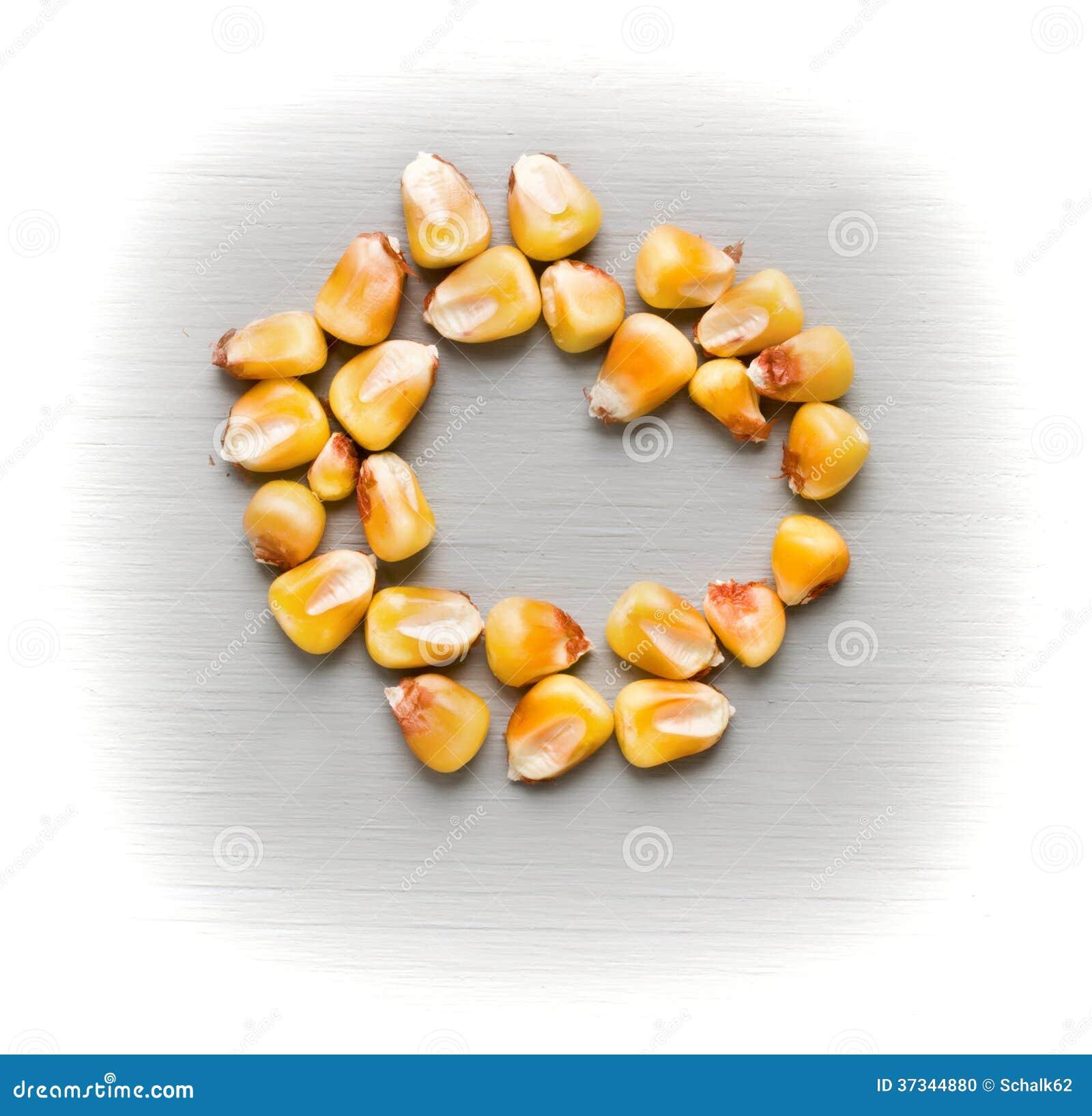 Cirkel av majs