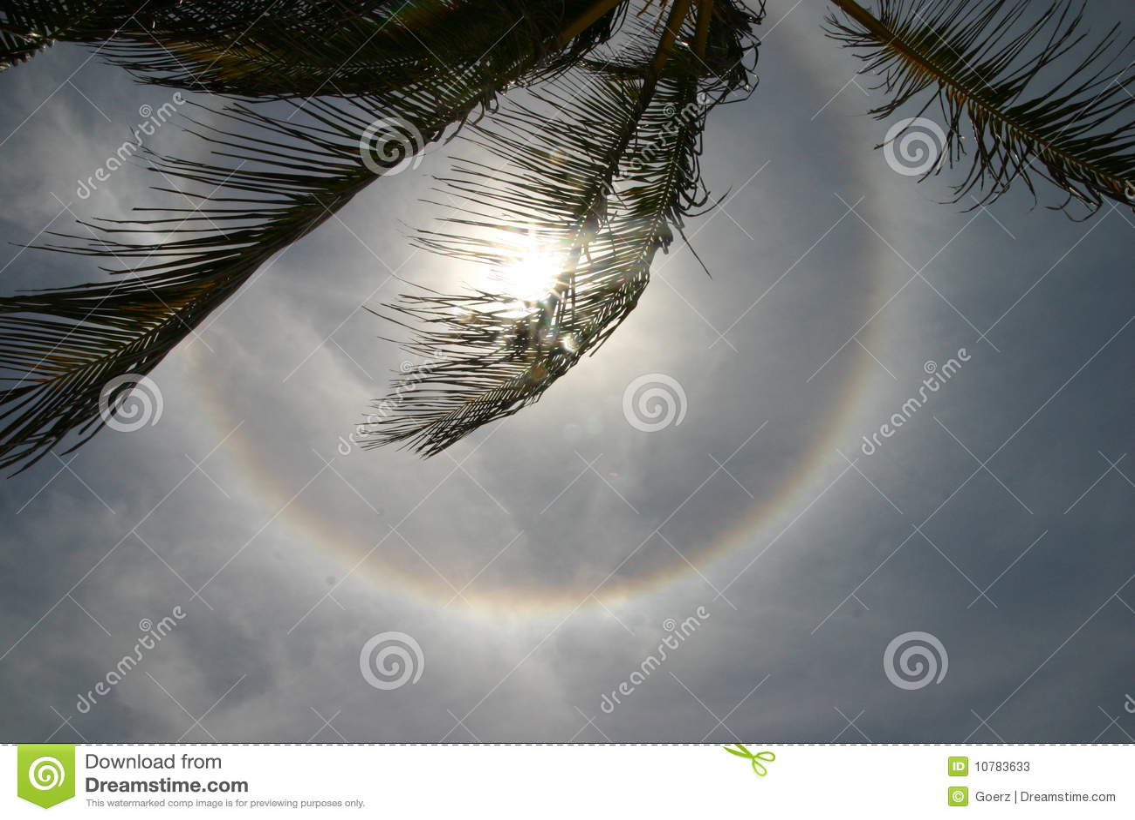 Cirkel zonnehalo