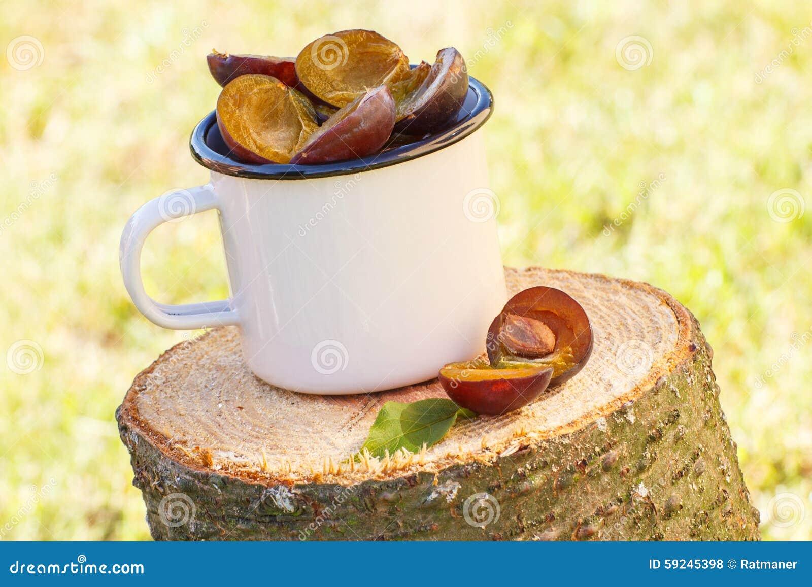 Ciruelos en taza metálica en tocón de madera en jardín el día soleado