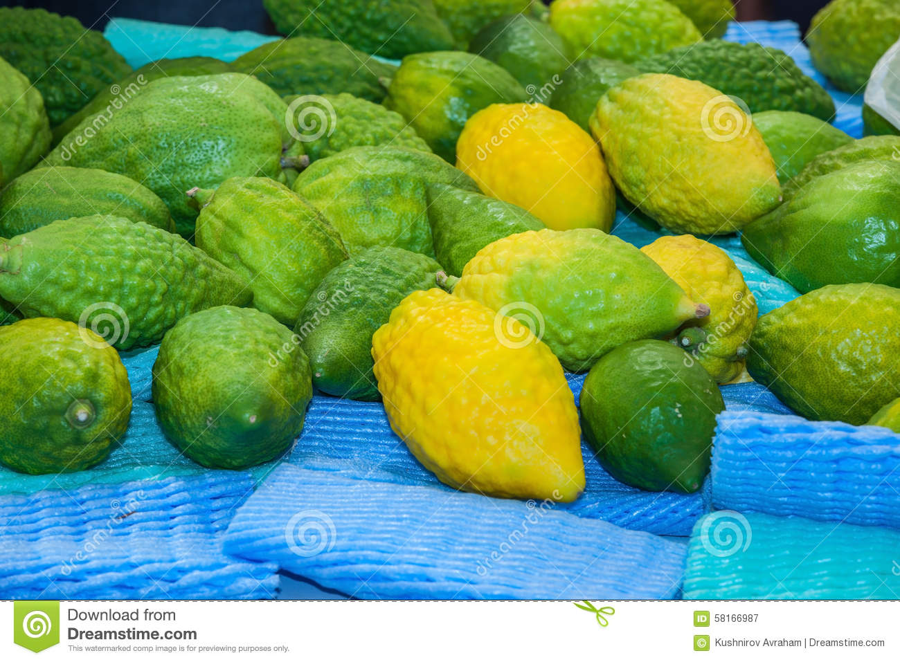 the citron fruit etrog laid out for sale stock image image