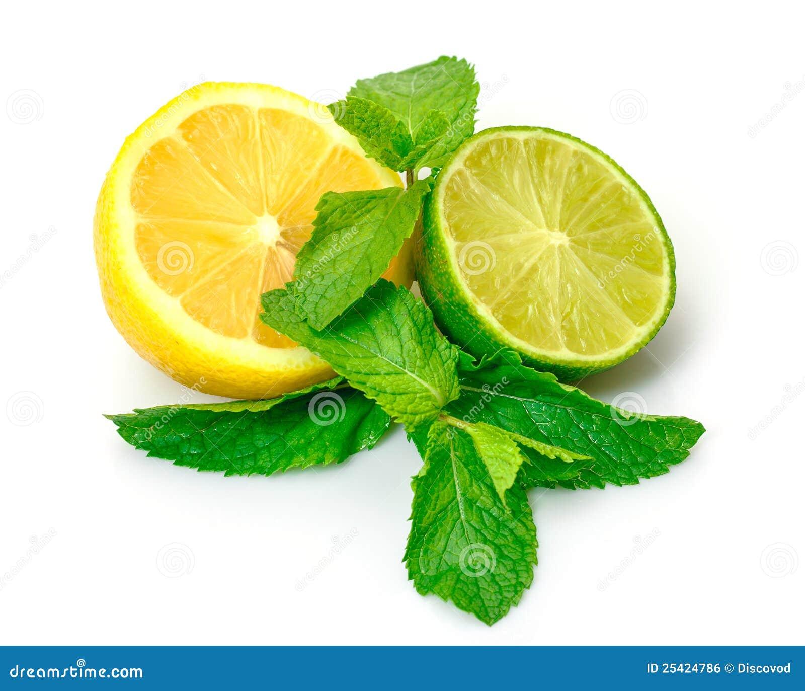 Citron, limette et menthe frais