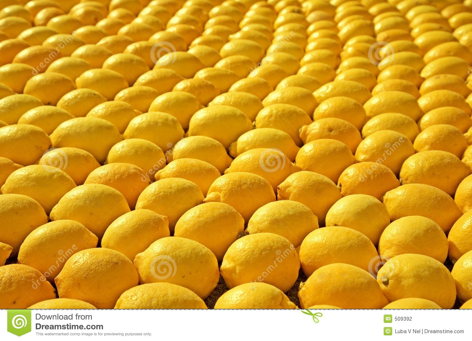 Citronrader