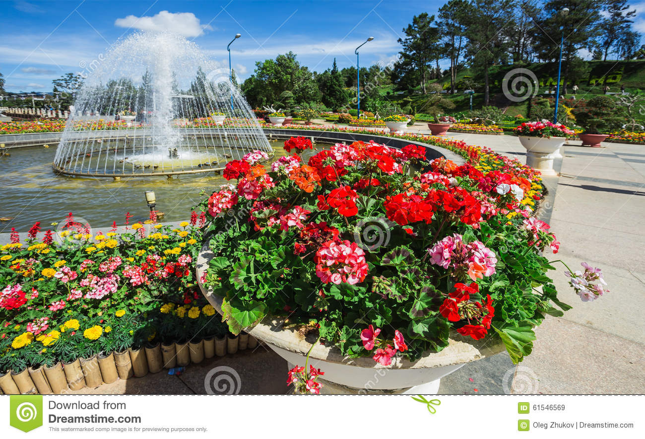 Delicieux City Flower Garden In Dalat, Vietnam Royalty Free Stock Images