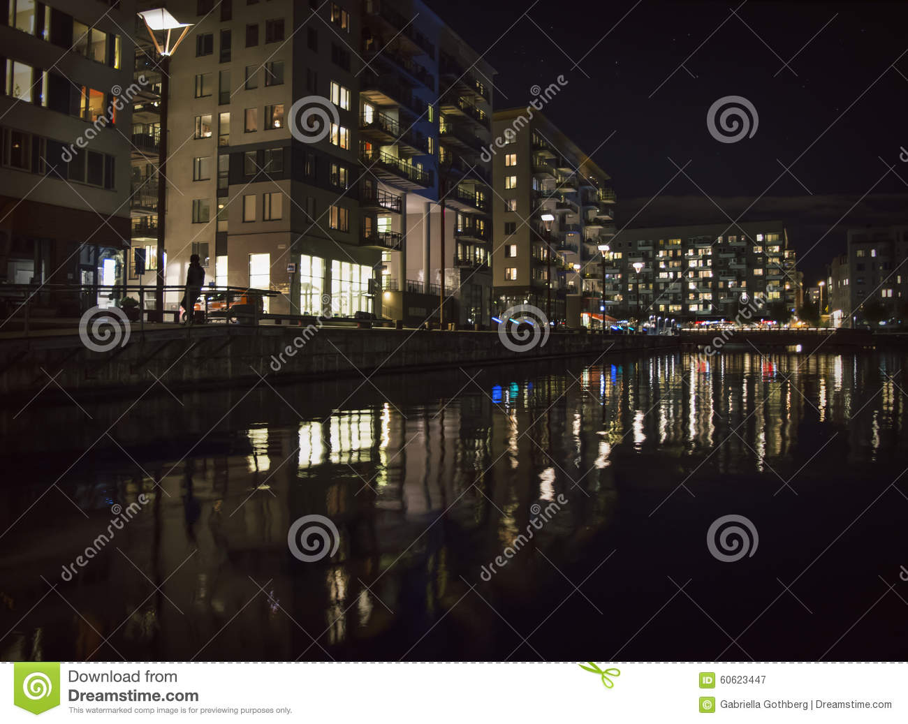 City lights reflected in water. Silhouette under a streetlight.