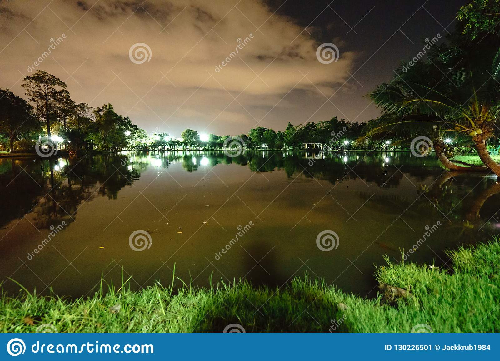 City park in the night with a resting place. The landscape of th