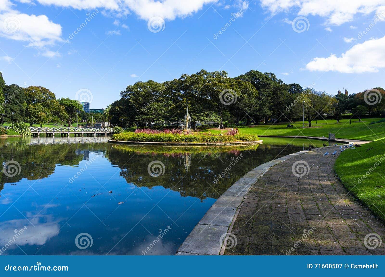 City pond and fountain, Sydney University park