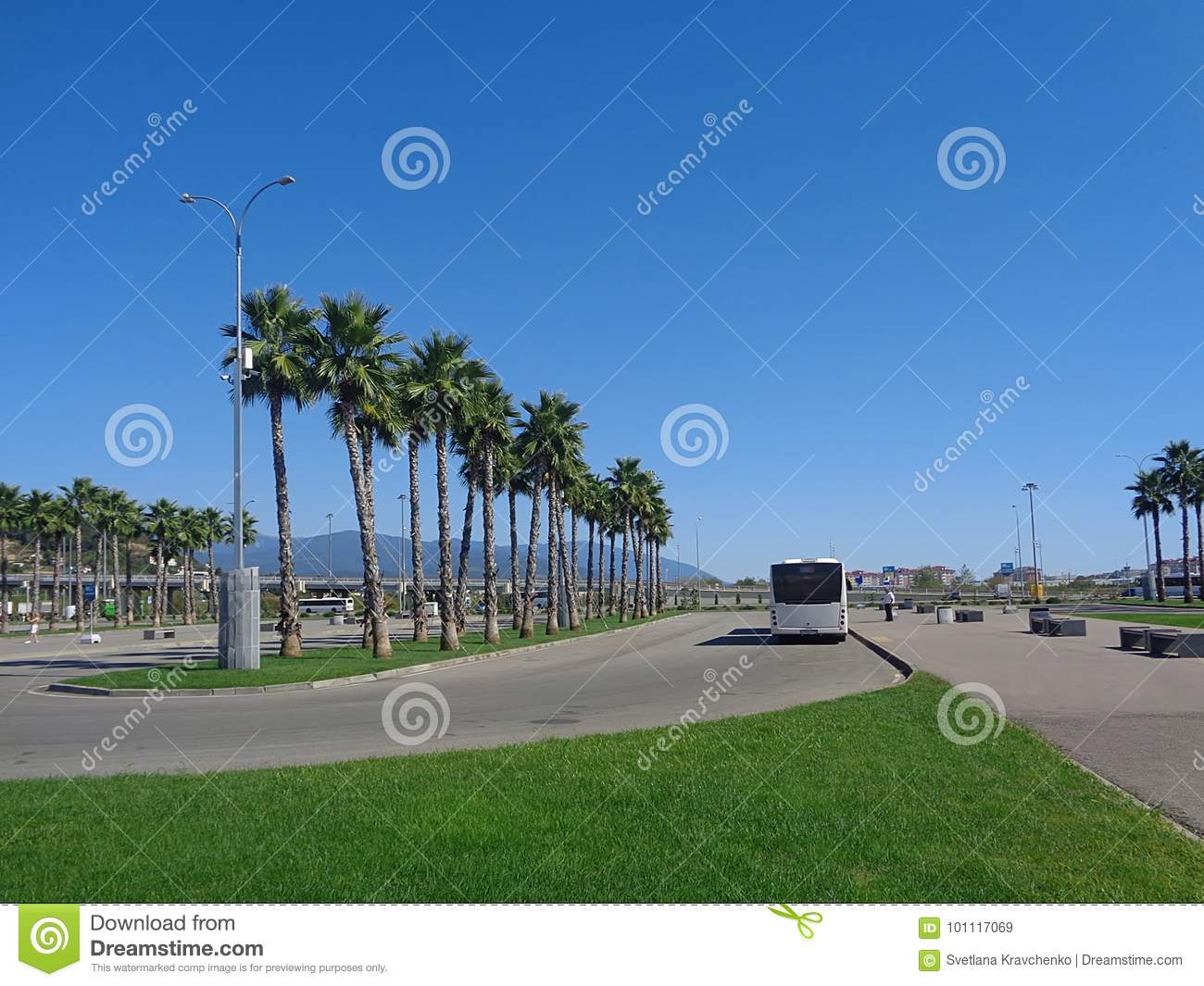Bus stop, palm trees and green grass on the lawn
